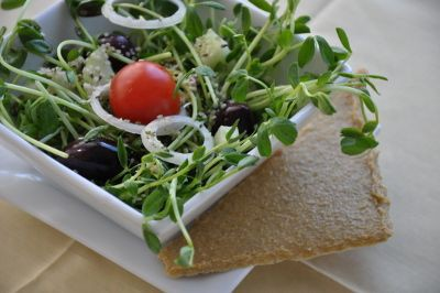 Comida viva - ensalada