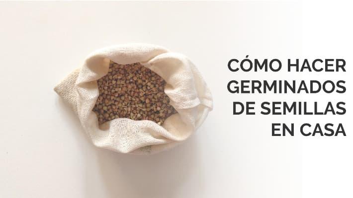 Cómo hacer germinados de semillas en casa