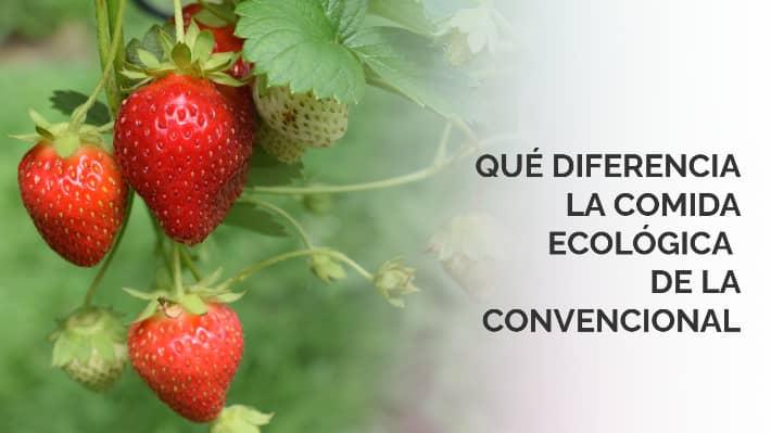 Qué diferencia la comida ecológica de la convencional